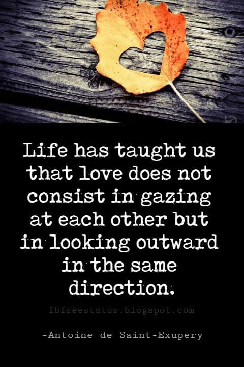 Valentines Day Quotes, Life has taught us that love does not consist in gazing at each other but in looking outward in the same direction. - Antoine de Saint-Exupery