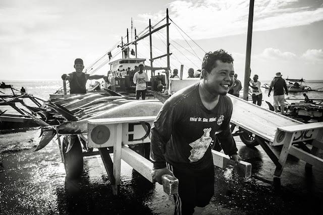 Tuna Festival Photo Contest Winners