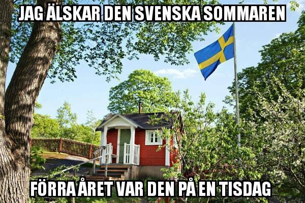 Michelin Svensk Sommar