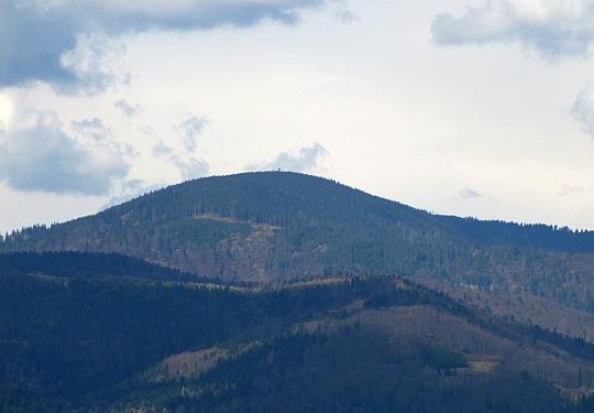 Zbliżenie na Radziejową (1266 m n.p.m.) - najwyższy szczyt Beskidu Sądeckiego