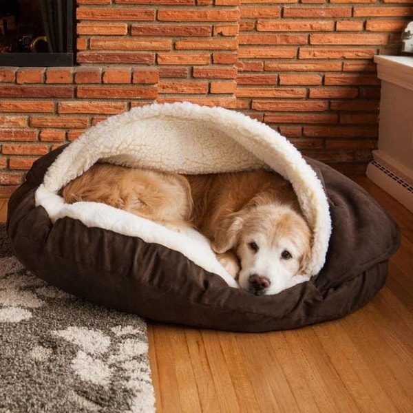 Cute Beds For Pets Combine With Interior Decoration Ideas 9