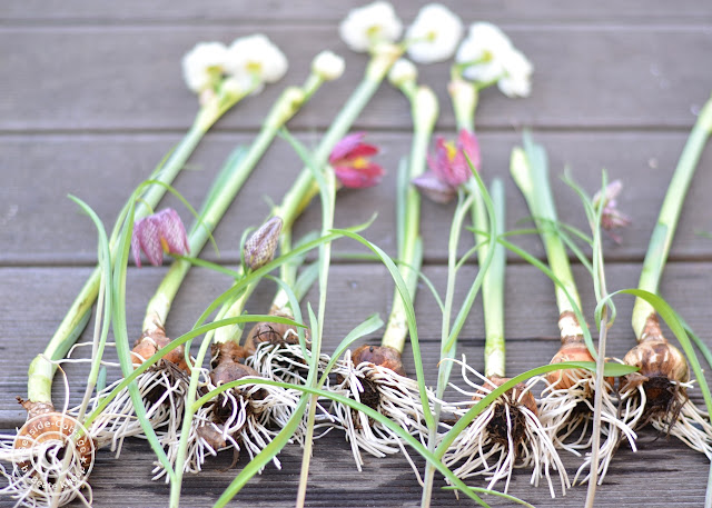 Naturdeko für Frühling und Ostern Seaside- Cottage-Blog