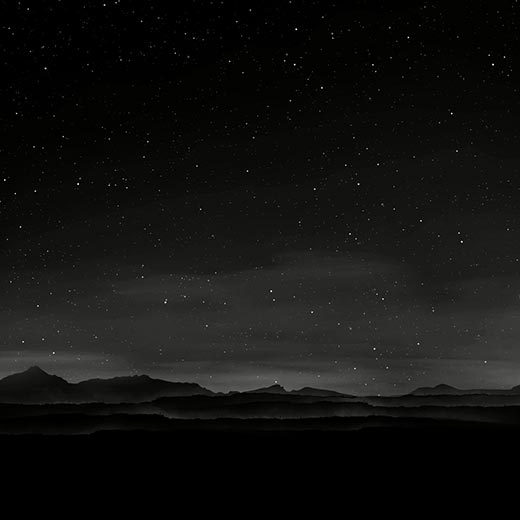 Noire Night Wallpaper Engine