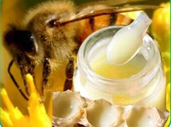 JALEA REAL Y SU PODER CICATRIZANTE - ROYAL JELLY AND ITS HEALING CAPACITY.
