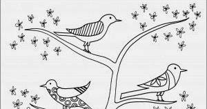 early play templates: Beautiful birds: colouring sheets