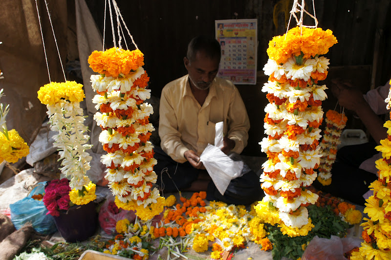 BombayJules: Best Exotic Marigold Seller