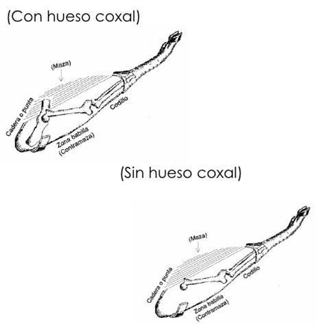 Corte Jamon. (Francisco): Manual