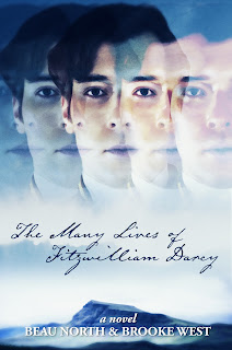 Book cover: The Many Faces of Fitzwilliam Darcy by Beau North and Brooke West