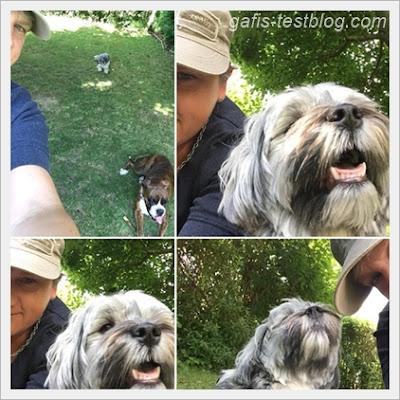 Selfietime mit Amy und Luca