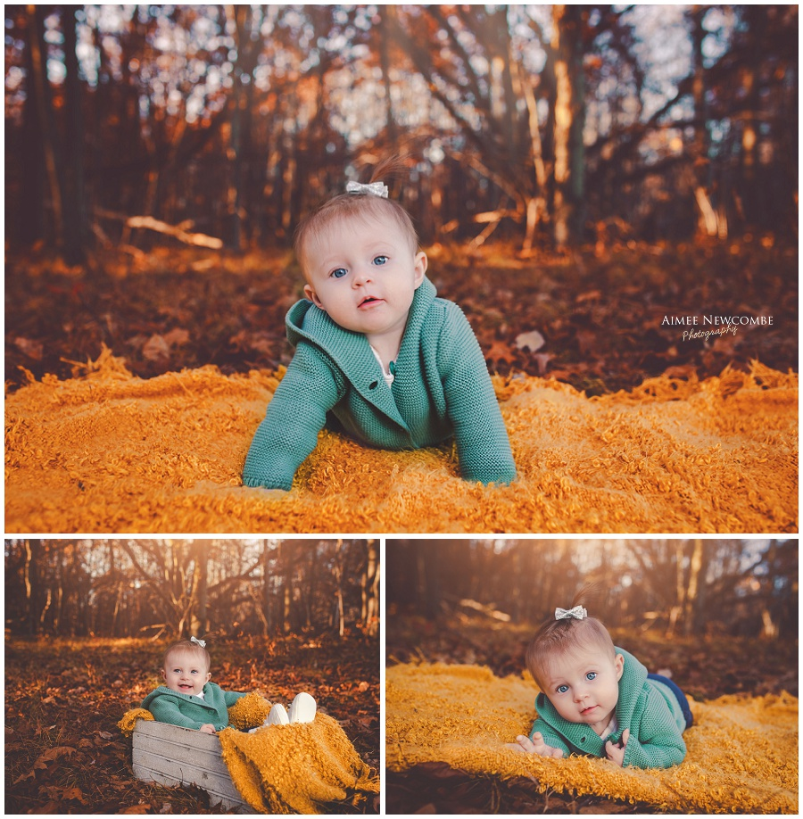 Sweet baby m 6 month fall session aimee newcombe photography