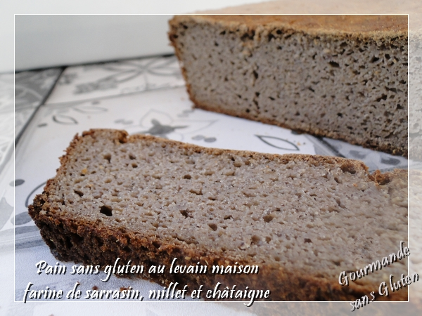 Pain sans gluten au levain maison, à la farine de sarrasin, millet et châtaigne