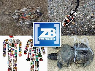El plástico mata - Nuestro enemigo ¿invisible?
