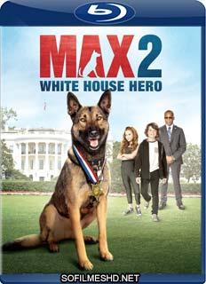 Baixar Max 2 – Um Agente Animal Dublado Torrent