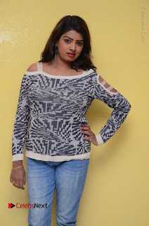 Actress Sridevi Stills in Jeans at No 1 Hero Rajendra Press Meet  0055.JPG