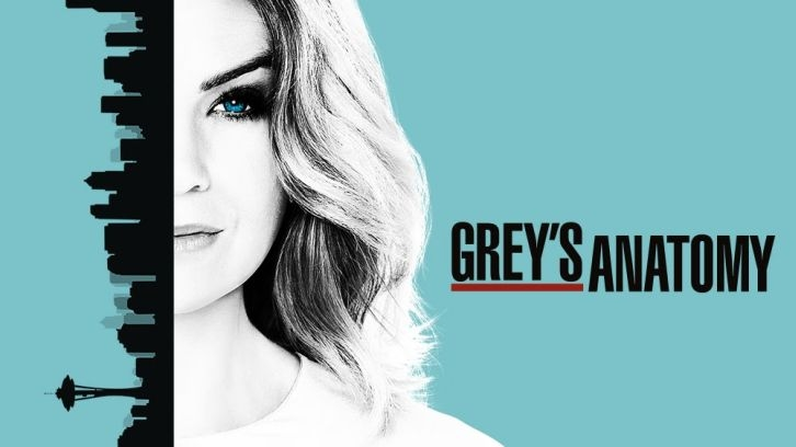 POLL : Favorite Scene from Grey's Anatomy - You Can Look (But You'd Better Not Touch)