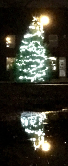 Outdoor Christmas tree reflected in pond