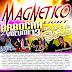 CD ARROCHA MAGNETICO LIGHT VOL 13 - 2016 ( DJ SIDNEY FERREIRA E PEDRINHO VIRTUAL)