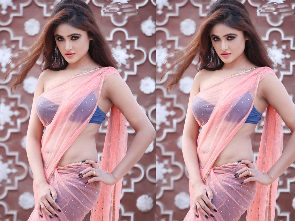 Wallpaper Sony Charishta Actress Hd Celebrities: Sony Charishta Latest Hot Navel Wallpaper