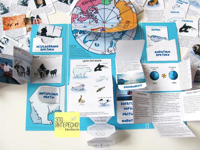 лэпбук Арктика и Северный полюс. Скачать файлы для распечатки