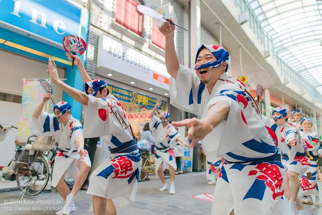 高円寺PAL商店街、阿波踊り、いろは連の流し踊りの写真
