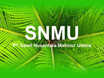 Lowongan Kerja Kaltim di PT Sawit Nusantara Makmur Utama , lowongan kerja kaltim September Oktober Nopember Desmeber 2019