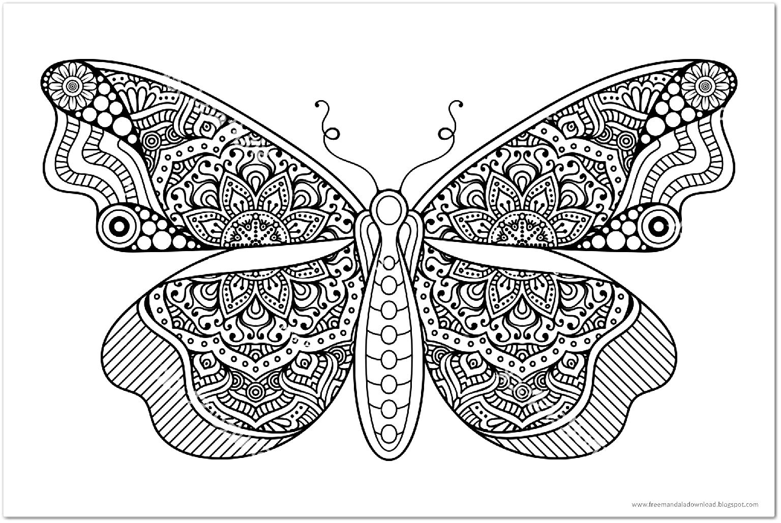 schmetterling mandalabutterfly mandala  free mandala