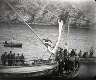 Τι έκρυβε το ναυάγιο των Αντικυθήρων
