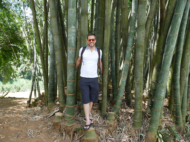 Simon Heyes - Royal Botanical Gardens - Sri Lanka