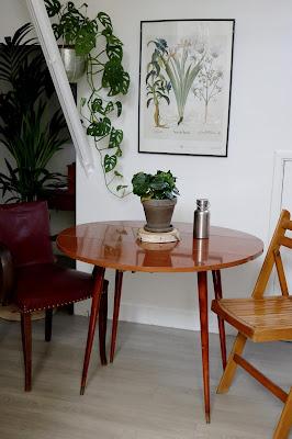 plantes dans la salle à manger