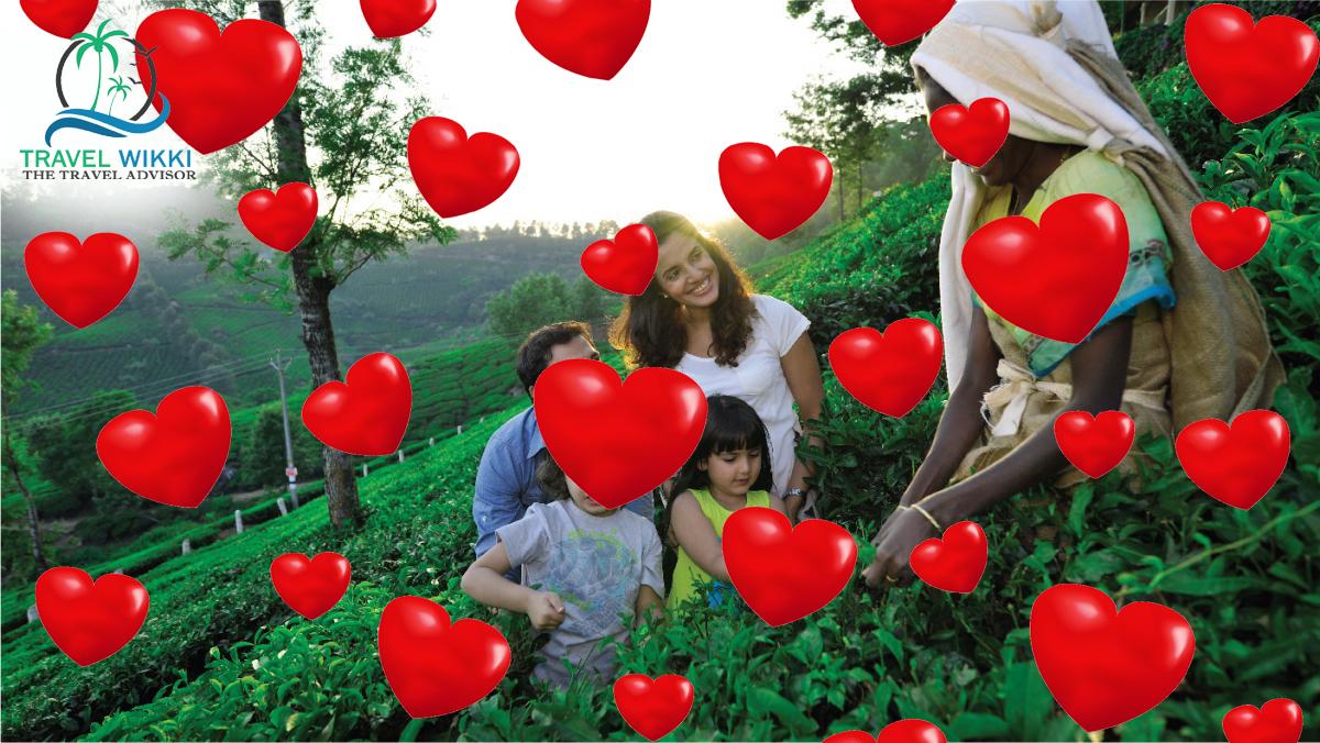 Munnar in Valentines Day