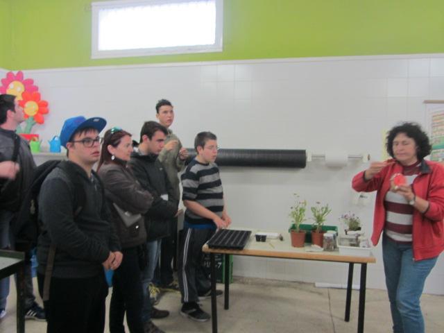 Piagetenses visita a la escuela de jardiner a el pinar for Escuela de jardineria