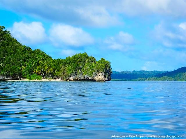 Pemandangan alam bahari Raja ampat