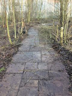 gardening, rose garden, hopwood