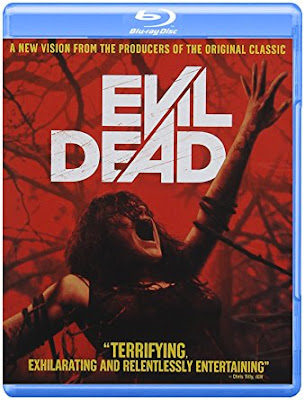Evil Dead 2013 Dual Audio Hindi Eng BRRip 300mb ESub