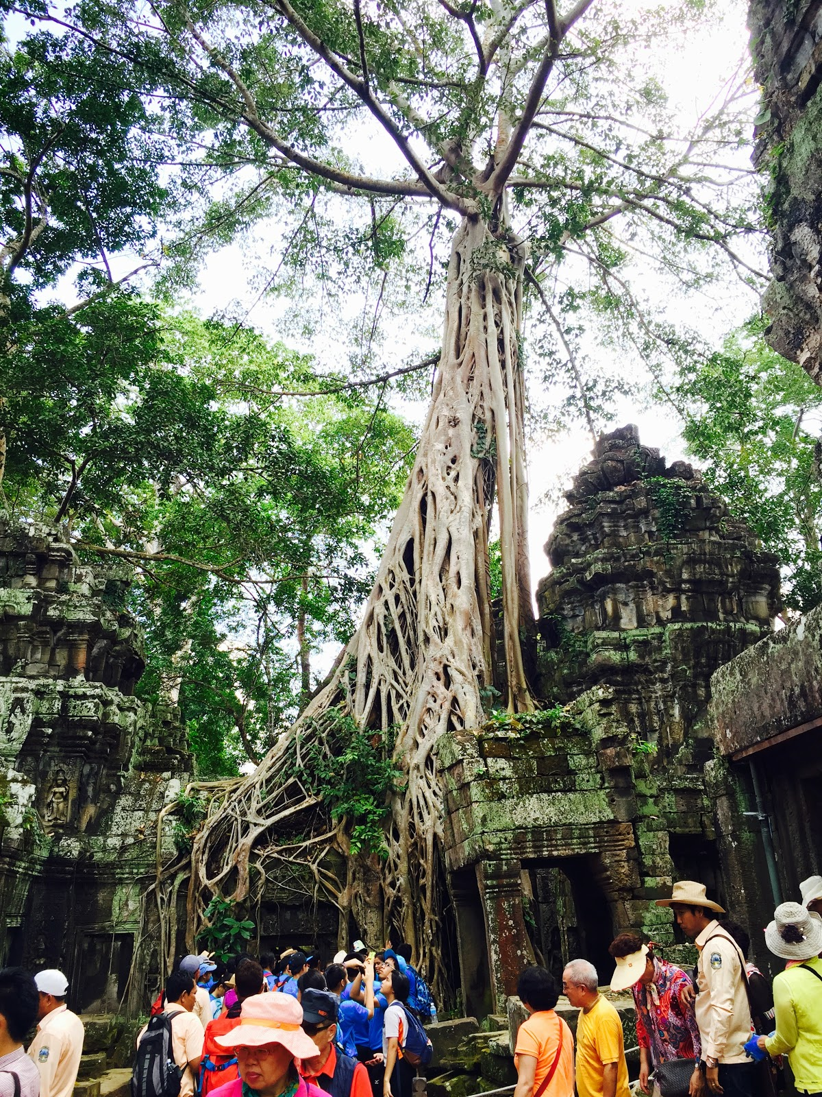 Travel To Angkor Wat From India