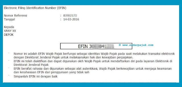 Contoh EFIN