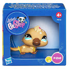 Littlest Pet Shop Special Platypus (#1395) Pet