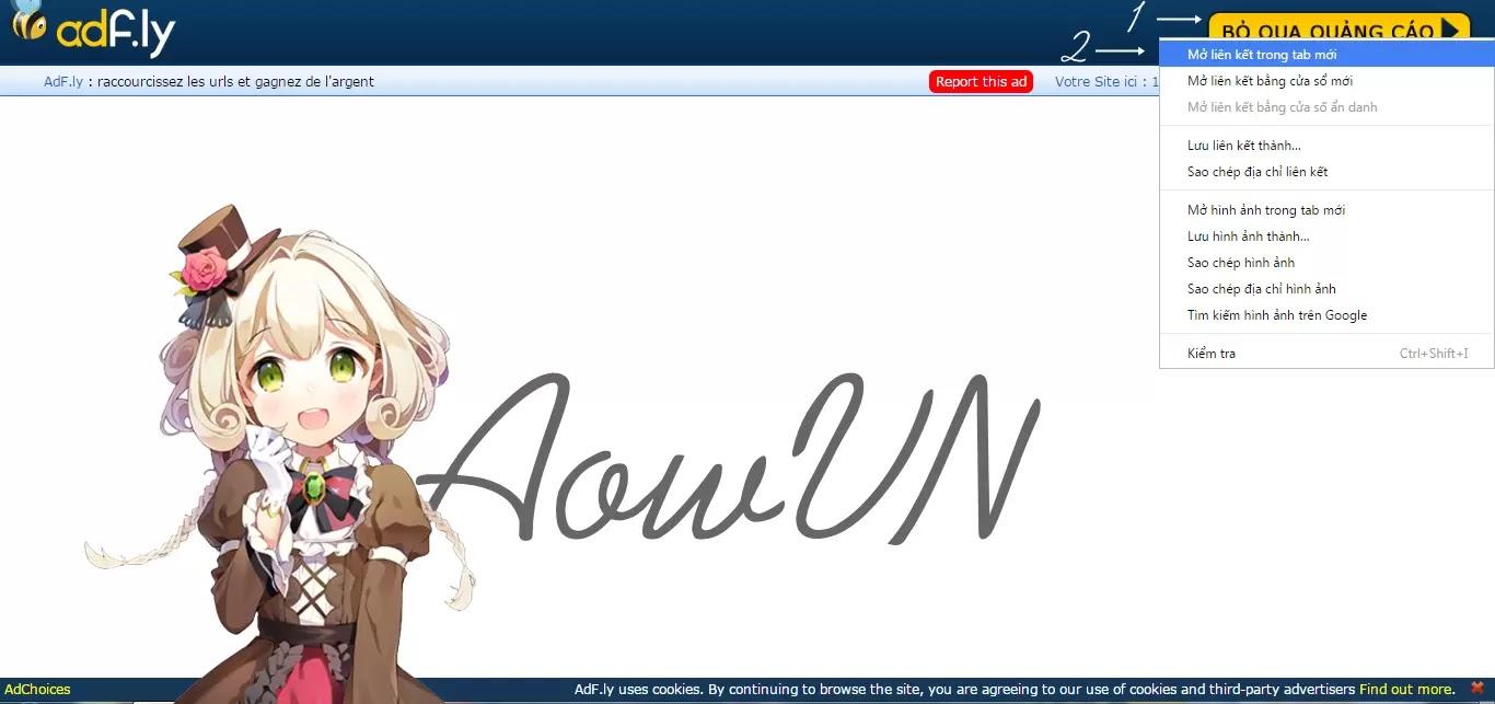aowvn - [ Hướng Dẫn ] Khắc phục lỗi không tải được trên Google Chrome - Cốc Cốc