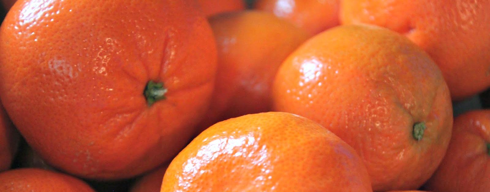 Mandarin orange cookies recipes