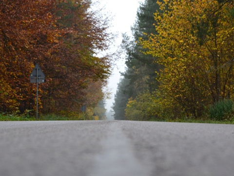 Wędrówka po jesiennym Roztoczu