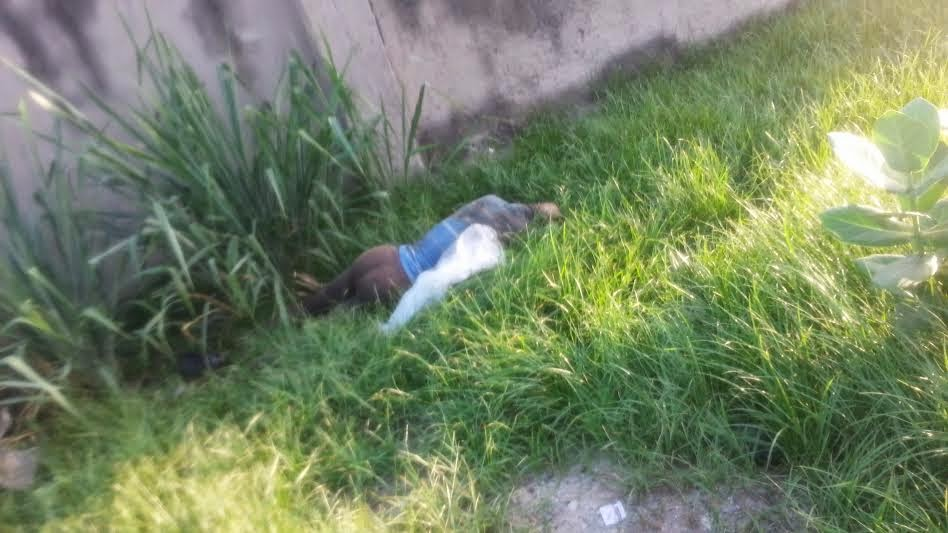Womans partially nude, decomposed body spotted along