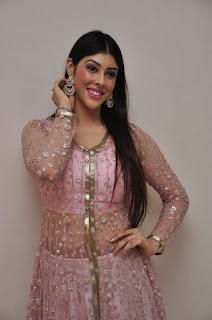 Actress Aditi Singh Latest Stills in Designer Dress at Guppedantha Prema Pressmeet 0001.jpg