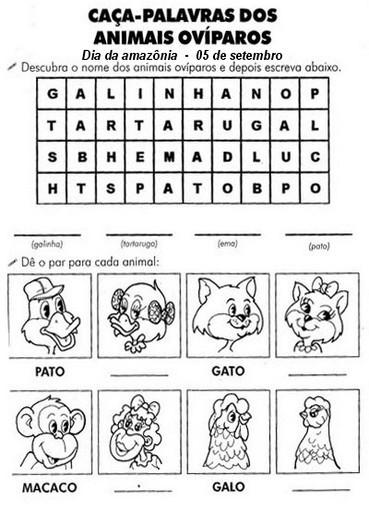 Cruzadas E Caca Palavras 50 Atividades De Alfabetizacao Portal