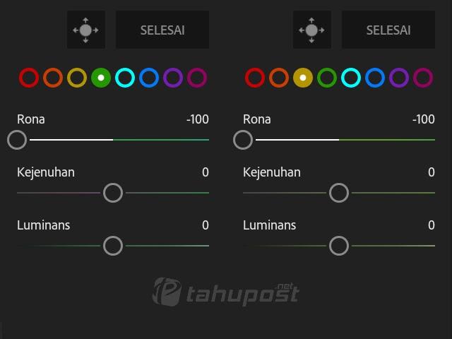 Cara Mengubah Warna Daun di Lightroom Android Menjadi Kuning Kecoklatan