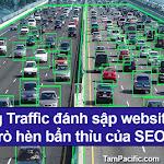 Sử dụng Traffic đánh sập website đối thủ trò hèn bẩn thỉu của SEOer