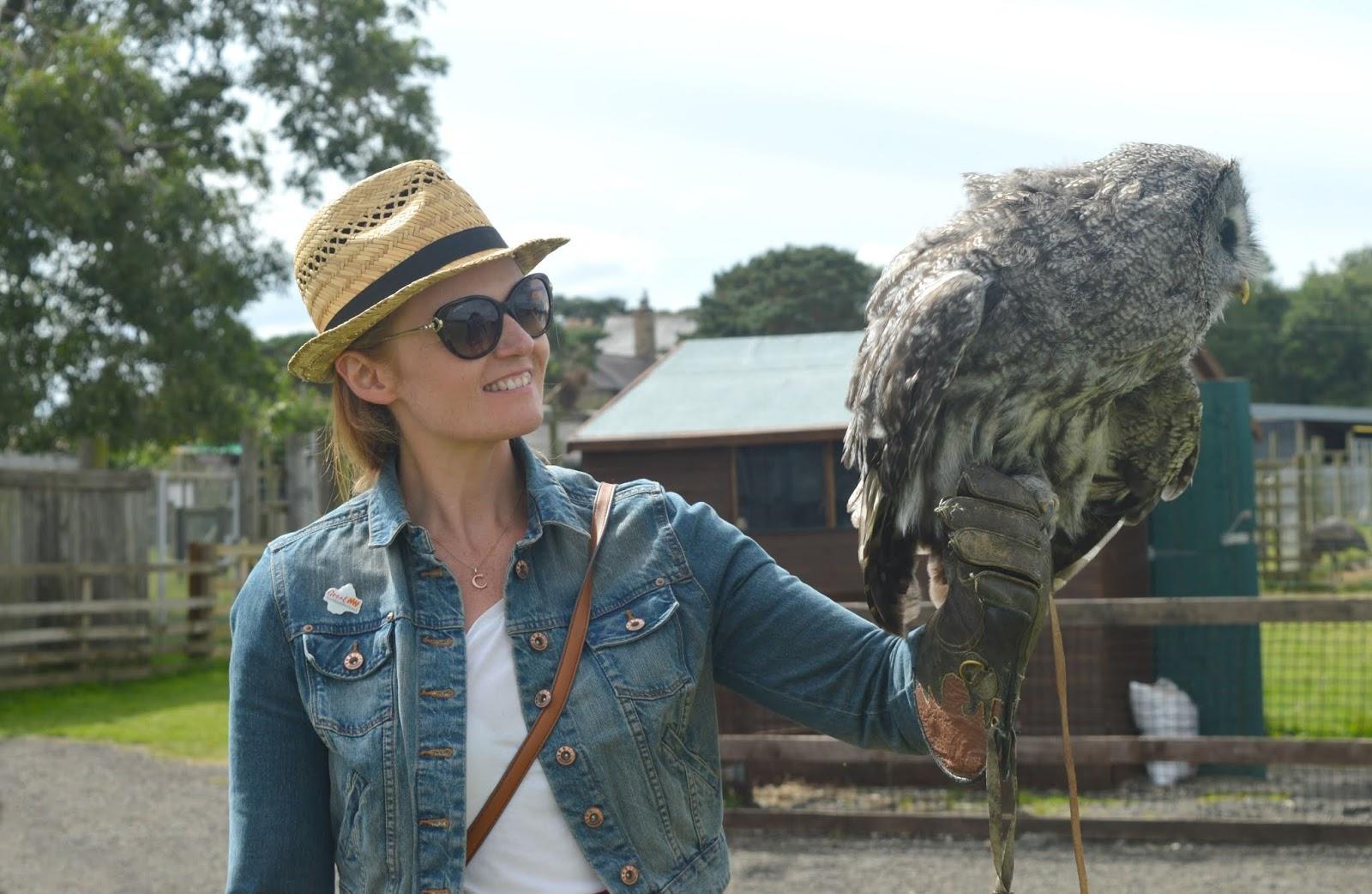 Whitehouse Farm, Northumberland - Meet The Owl