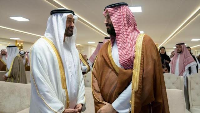 """""""Arabia Saudí y EAU han declarado guerra contra Turquía"""""""
