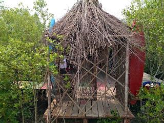 Mempawah Mangrove Park 9
