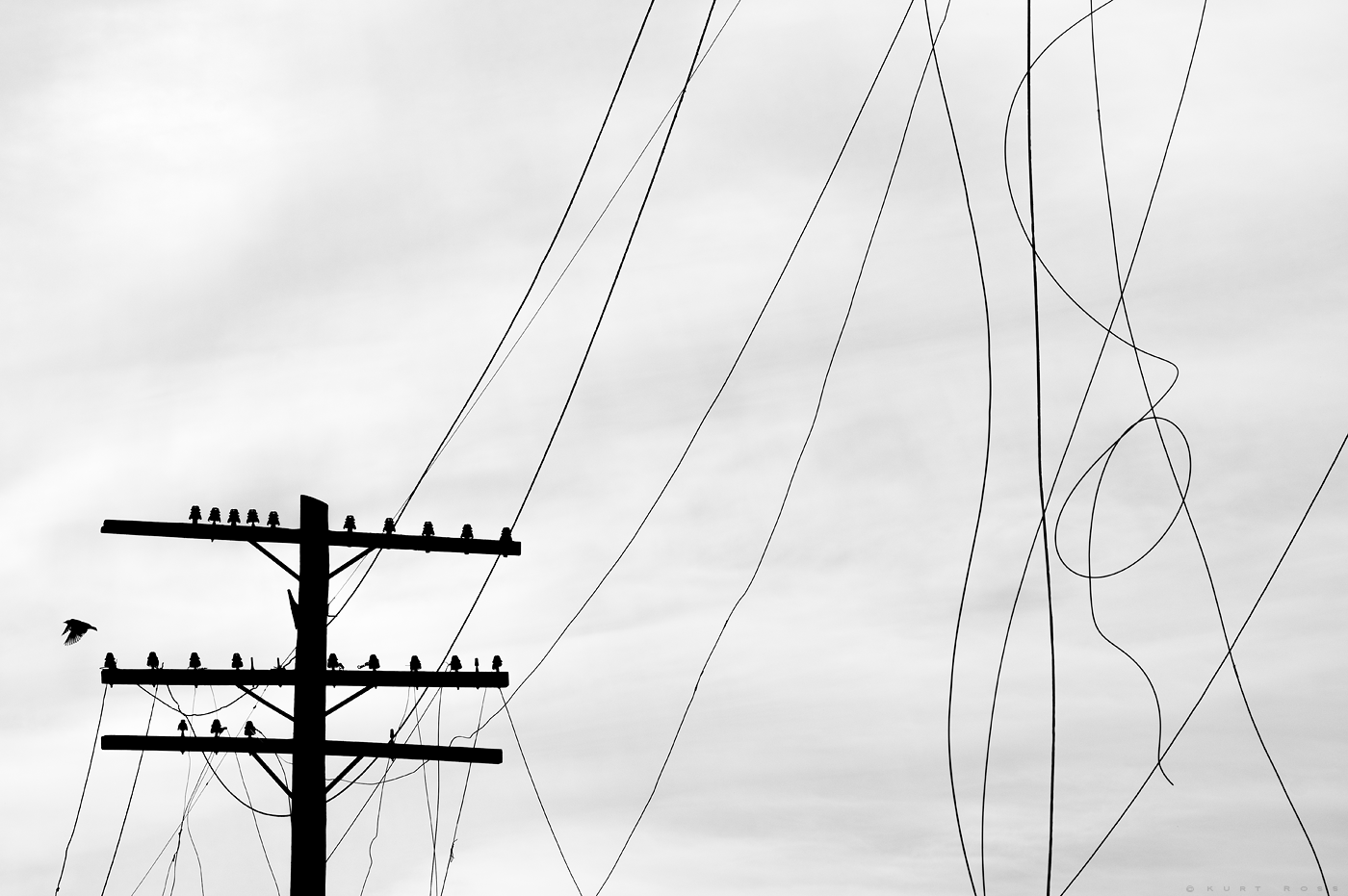 POWER Lines Kurt Ross