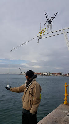 Catching a star along the port